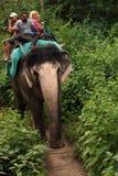 Groep toeristen en mahout zitting op grote olifant in Indische safariwildernis royalty-vrije stock foto's