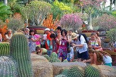 Groep toeristen op excursies in het tropische Park Nong Nooch in Pattaya stock afbeeldingen