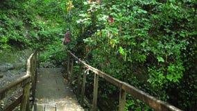 Groep toeristengangen op bergbrug stock footage