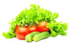 Groep tomaten, komkommers en salade Stock Foto's