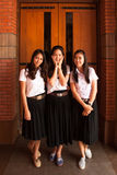 Groep universitaire student Stock Afbeelding