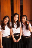 Groep universitaire student Royalty-vrije Stock Foto's