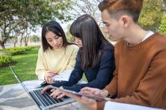 Groep Universitaire Studenten Aziatische zitting op het groene gras die en buiten in een park samenwerken lezen stock foto