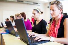 Groep universiteit/universitaire studenten binnen in een klaslokaal Royalty-vrije Stock Afbeeldingen