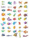 Groep verschillende vissen royalty-vrije illustratie