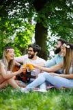 Groep vrienden die grote tijd op picknick in aard hebben stock foto
