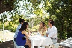 Groep vrienden die met elkaar samen interactie aangaan terwijl het hebben van lunch Stock Foto