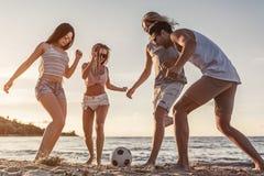 Groep vrienden op strand stock afbeelding