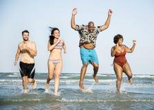 Groep vrolijke vrienden bij het strand Royalty-vrije Stock Fotografie