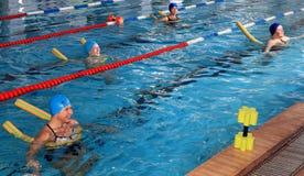 Groep vrouwen in het gesynchroniseerde zwemmen in openbare pool worden opgeleid die. Royalty-vrije Stock Foto's