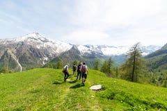 Groep wandelaars die de Alpen, openluchtactiviteiten in de zomer onderzoeken Stock Afbeelding