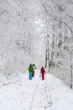 Groep wandelaars in mistig de winterbos Stock Afbeelding