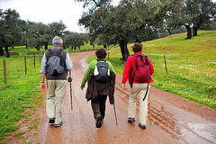 Groep wandelaars op de Siërra het Natuurreservaat van DE Aracena, Spanje Stock Afbeelding