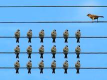Groep zorgvuldige luisteraars en spreker Stock Afbeelding