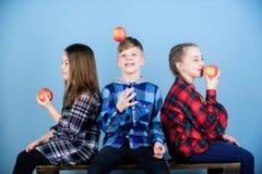Groeps vrolijke tieners die en appelen meedelen eten Jongen en meisjes de vrienden eten appelsnack terwijl het ontspannen teens royalty-vrije stock afbeelding