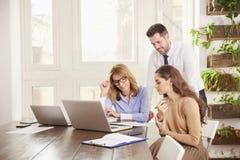 Groepswerk in het bureau Groep bedrijfsmensen die aan laptop in het bureau samenwerken royalty-vrije stock fotografie