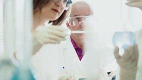 Groepswerk in het laboratorium met de reageerbuizen stock videobeelden