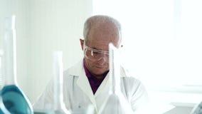 Groepswerk in het laboratorium met de reageerbuizen stock footage