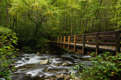 Großer rauchige Gebirgsnationalpark Lizenzfreies Stockfoto