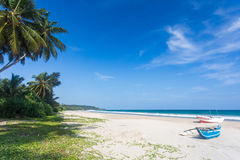 Großer tropischer Strand mit Palmen Stockfotos