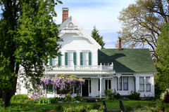 Großes altes historisches Haus Stockbild