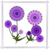 Groetenkaart met violette de zomerbloemen in wijnoogst Stock Fotografie