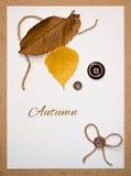 Groetkaart met de herfstbladeren en knopen Stock Foto
