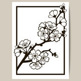 Groetkaart met een tak van kersenbloesems Stock Afbeelding