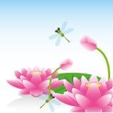 Groetkaart met lotusbloembloem Stock Foto