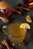 Grog chaud chaud avec le citron image stock