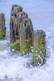 Groins in the Baltic Sea Stock Photo