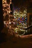 Gromadzący się bożonarodzeniowe światła przy białoryb górską wioską i drzewa obraz royalty free