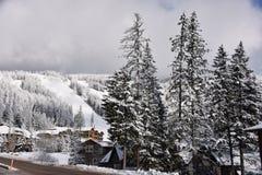 Gromadzący się drzewa i nowy śnieg przy białoryb górską wioską i fotografia royalty free