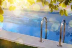 Gromadzi drabinę w basenie z liśćmi i słońcem Zdjęcie Stock