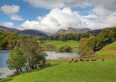 gromadzki jeziora krajobrazu spektakularny Zdjęcia Royalty Free