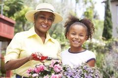Großmutter mit der Enkelin, die zusammen im Garten arbeitet Lizenzfreie Stockfotos