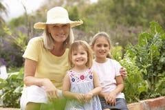 Großmutter und Enkelkinder, die im Gemüsegarten arbeiten Lizenzfreie Stockfotos
