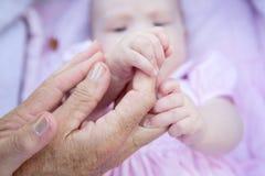 Großmutterhände, die Babyhände halten Stockfotografie