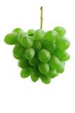 grona winogrona zieleń obraz stock
