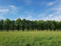Grond en lucht als vrijheid Royalty-vrije Stock Fotografie