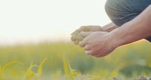 Grond, landbouw die, landbouwershanden en achter organische grond houden gieten stock video