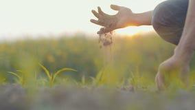 Grond, Landbouw, - Landbouwershanden die en achter organische grond houden gieten stock videobeelden