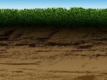 Grond met gras Stock Fotografie