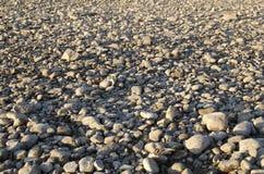 Grond met rotsachtige kiezelstenen   Stock Fotografie
