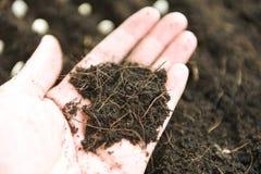 Grond op handlandbouwer voor het planten van installaties in de landbouwlandbouw stock afbeelding
