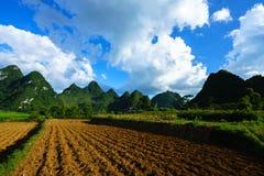 Grond op padieveld na het oogsten van seizoen met berg en blauwe hemel in Vietnam Stock Foto