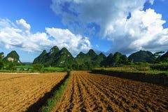 Grond op padieveld na het oogsten van seizoen met berg en blauwe hemel in Vietnam Royalty-vrije Stock Afbeelding