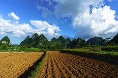 Grond op padieveld na het oogsten van seizoen met berg en blauwe hemel in Vietnam Stock Afbeelding