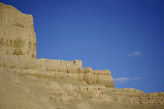 Grondbos--Tibet Royalty-vrije Stock Fotografie