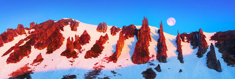 Grondel - rotsreserve Stock Afbeelding